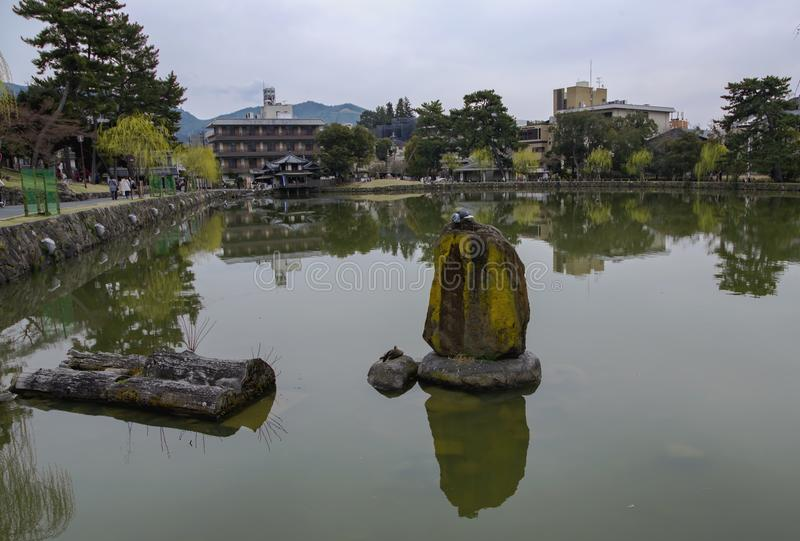 Sarusawa-sarusawa-ike είναι μια ήρεμη λίμνη στο κέντρο του Νάρα στοκ εικόνες
