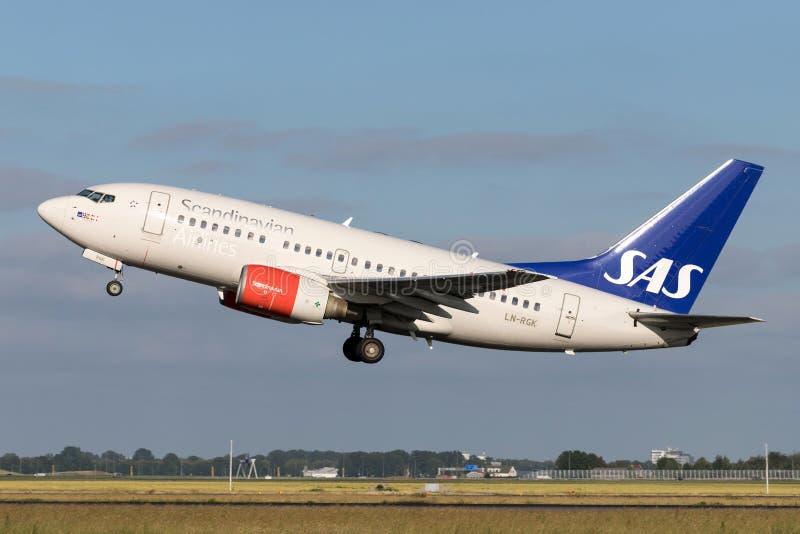 SAS Scandianvian flygbolag Boeing 737-600 royaltyfri foto