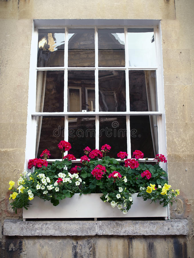 Download Sash Window and Flower Box stock photo. Image of beauty - 13379884