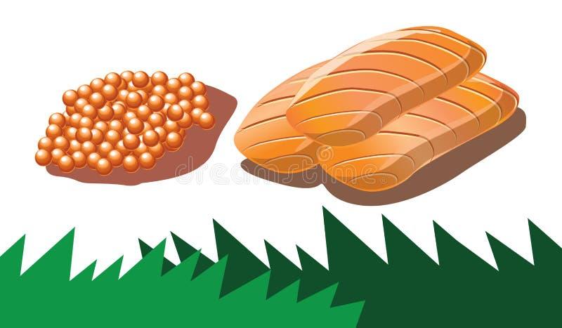 Sashimi de color salmón de las huevas y de los salmones   stock de ilustración