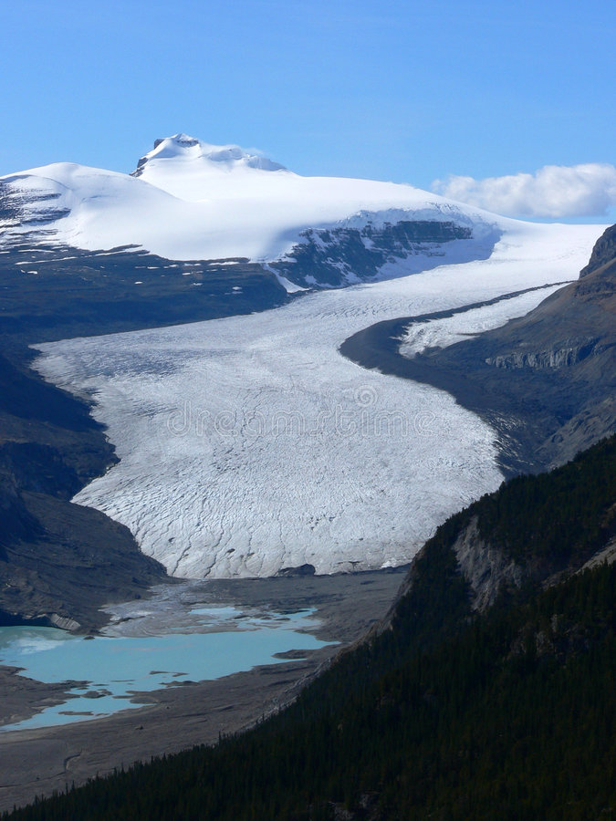 Saskatchewan Glacier stock photography