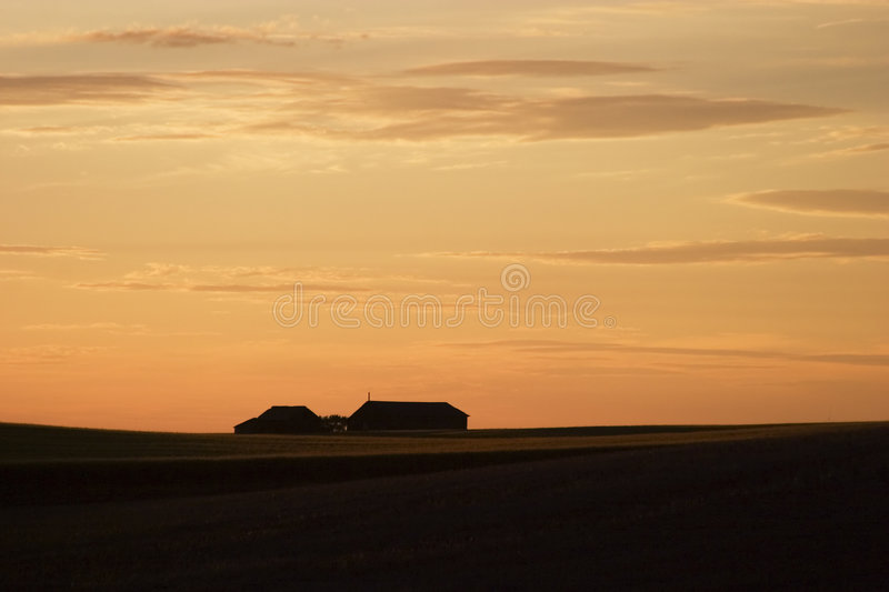 Download Saskatchewan Horizon stock photo. Image of prairie, nature - 457088