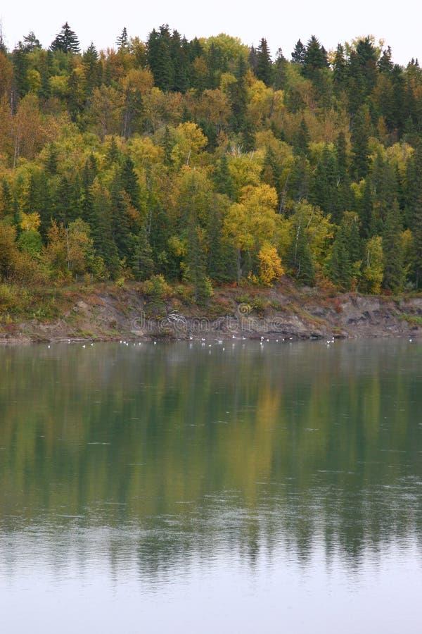 Saskatchewan River stock image