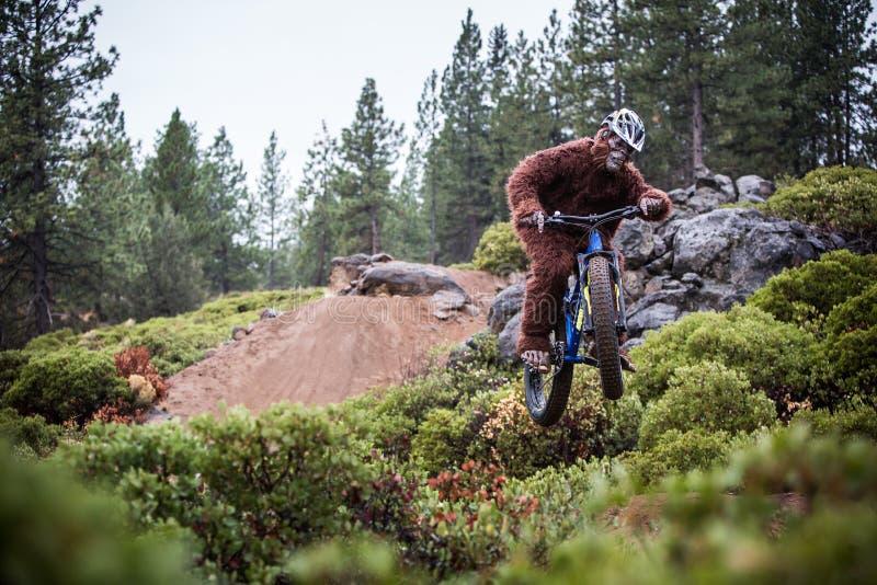 Sasquatch (yeti) saute une bicyclette dans le ciel photo libre de droits