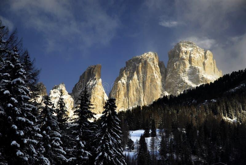 Sassolungo Langkofel grupp av de italienska dolomitesna i vinter från Campitello di Fassa Ski Area i Canazei fotografering för bildbyråer