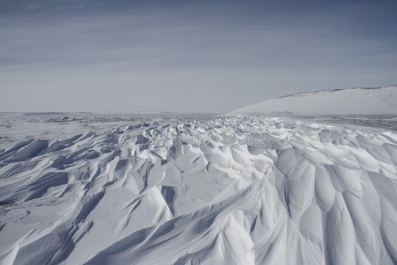sastrugi的美好的样式,坚硬雪表面上的风造成的平行的波形的土坎  免版税图库摄影