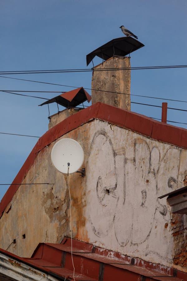Satelitarnego odbiorcy naczynie na dachu stary dom Ptasi obsiadanie na drymbie zdjęcie royalty free