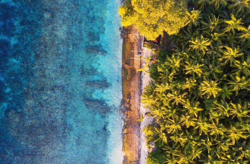 Satellietbeeld bij oceaan en palmen Turkooise waterachtergrond van hoogste mening De zomerzeegezicht van lucht Het Eiland van Bal royalty-vrije stock foto's