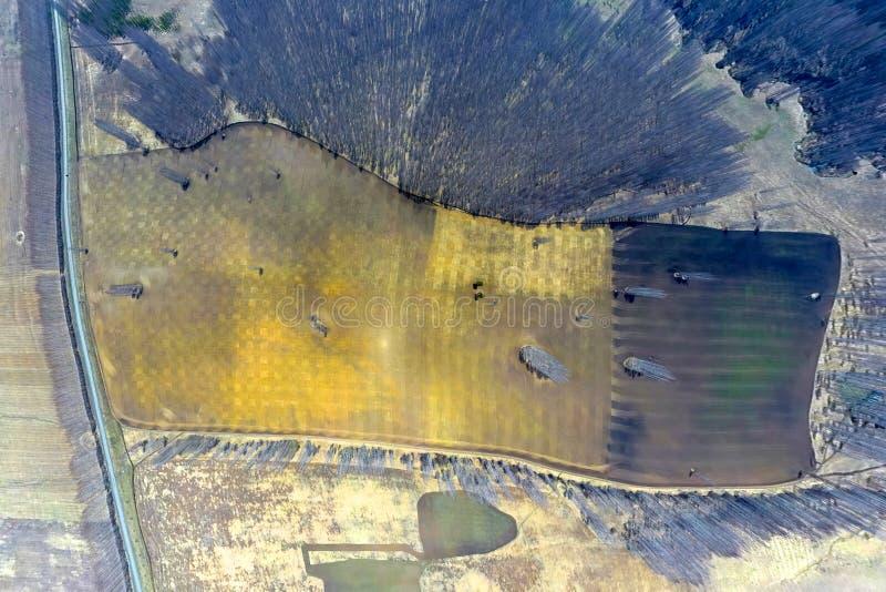 Satellietbeeld van landbouwgebieden van verschillend kleurengewas onder een duidelijke blauwe hemel met wolken op een zonnige war stock afbeeldingen