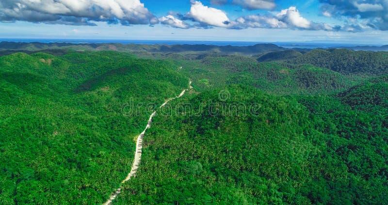 Satellietbeeld van palmenbos, weg en berg op het Siargao-eiland filippijnen royalty-vrije stock afbeelding