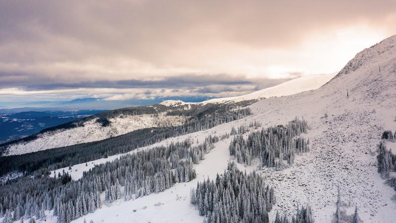 Satellietbeeld van sneeuw behandeld bos bij zonsondergang royalty-vrije stock fotografie