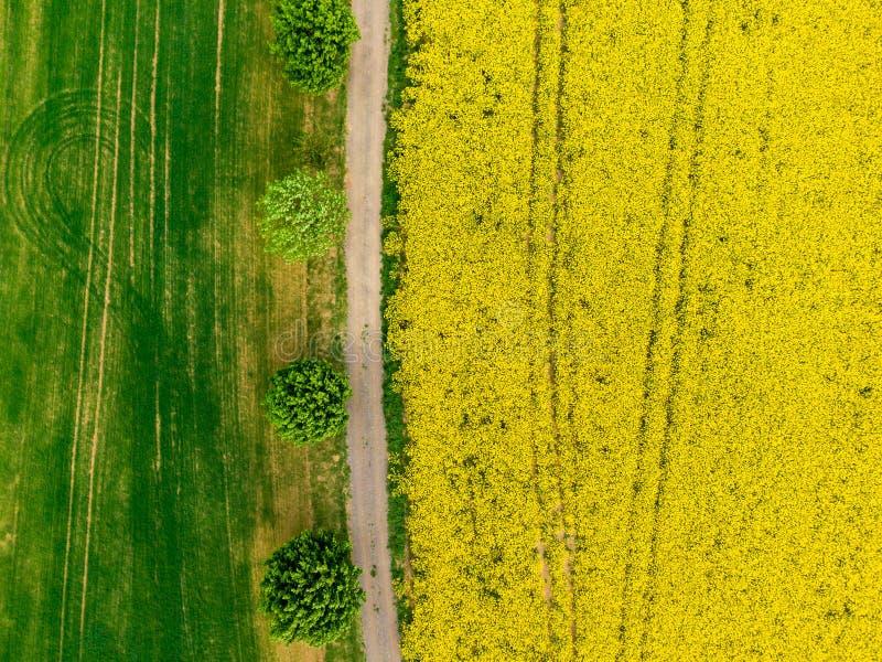 Satellietbeeld van weg tussen groene en gele gebieden Landbouwhommel van het gebied van het canolaraapzaad en groen gewassengebie stock afbeeldingen