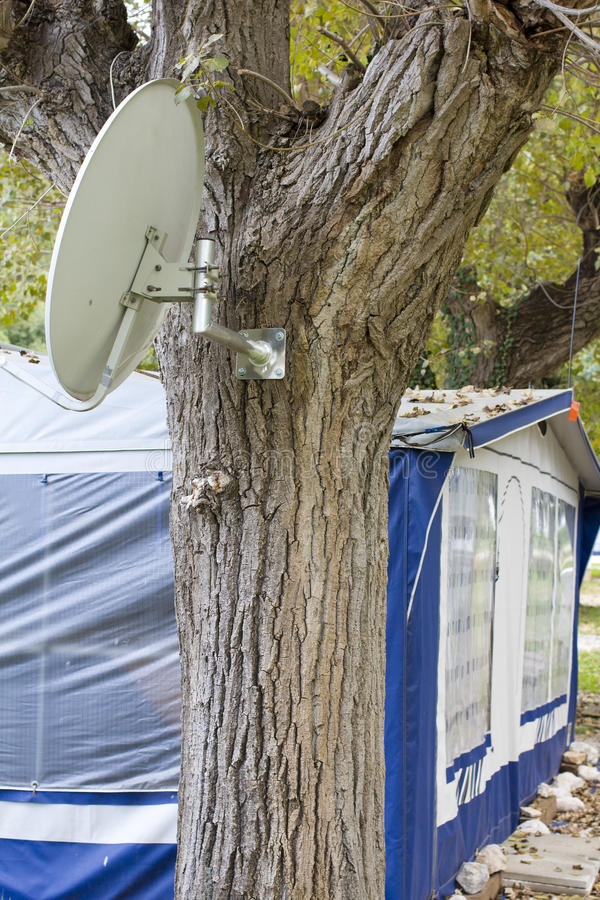 Satellite dish mounted on the tree. In the camping place stock images