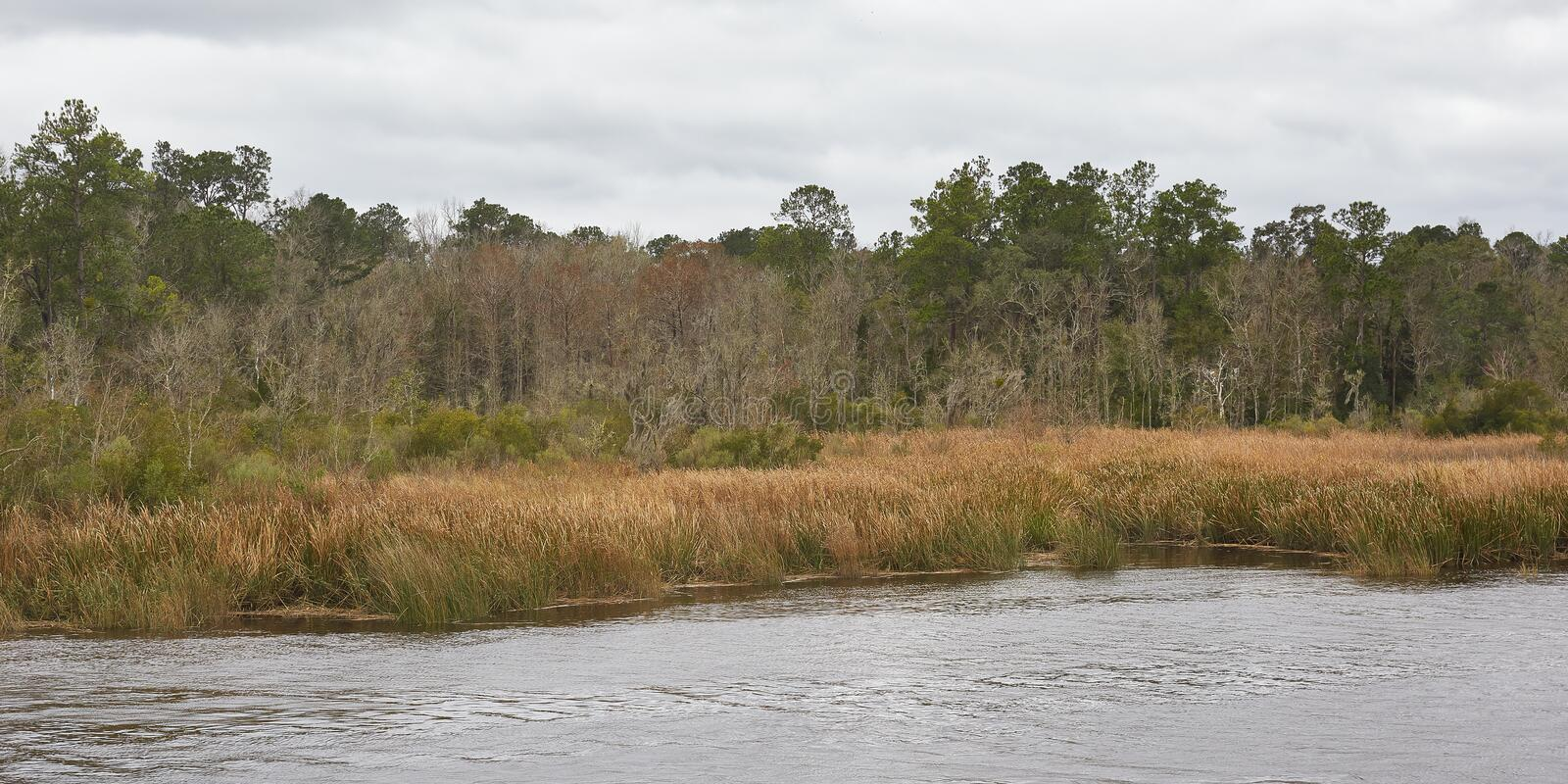 Satilla River Scenery in Coastal Georgia stock photo