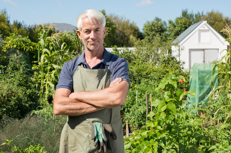 Satisfied farmer in garden. Successful mature man in field. Portrait of a senior man looking at camera in vegetable garden. Happy gardener satisfied and smiling stock photo