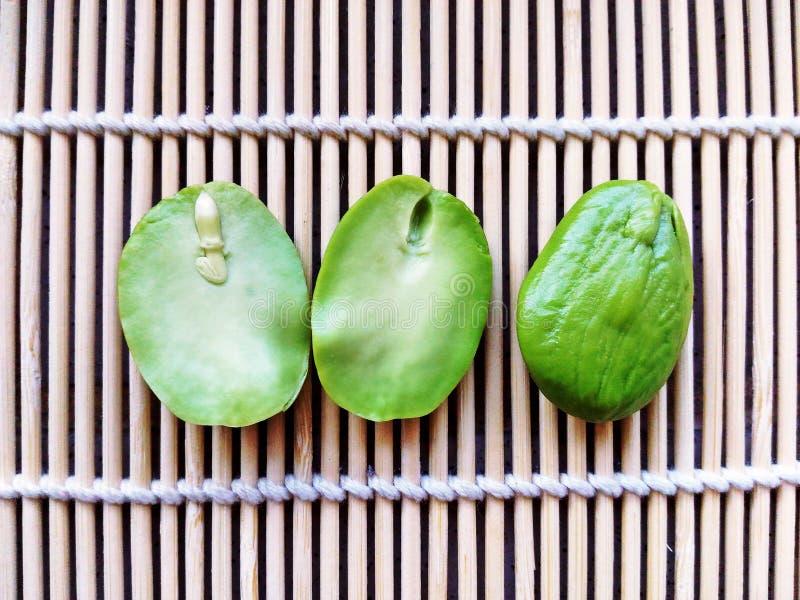Satozaden, Parkia-speciosazaden of bittere boon op bamboetraliewerk stock foto