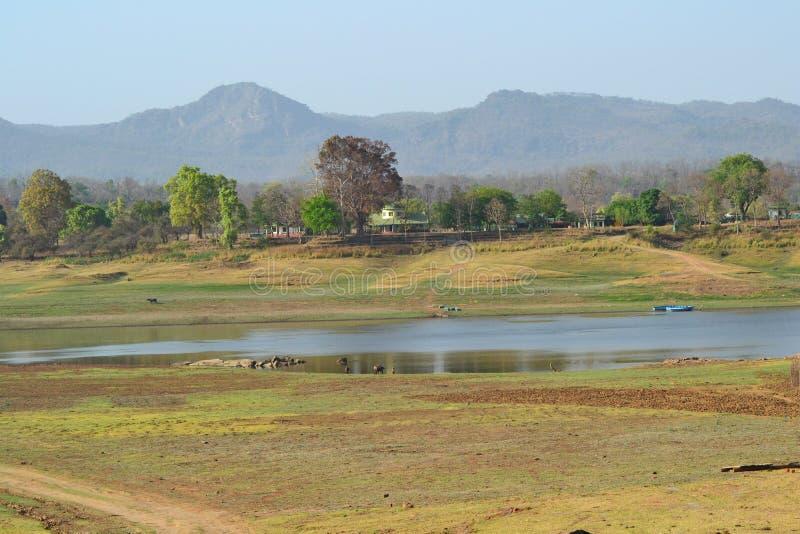 Satpurabergketens en Rivier Denwa India stock foto's