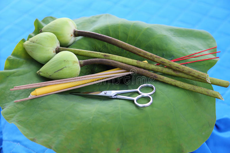 Satser för att folkbruk ska klippa pre-munkars hår royaltyfri foto