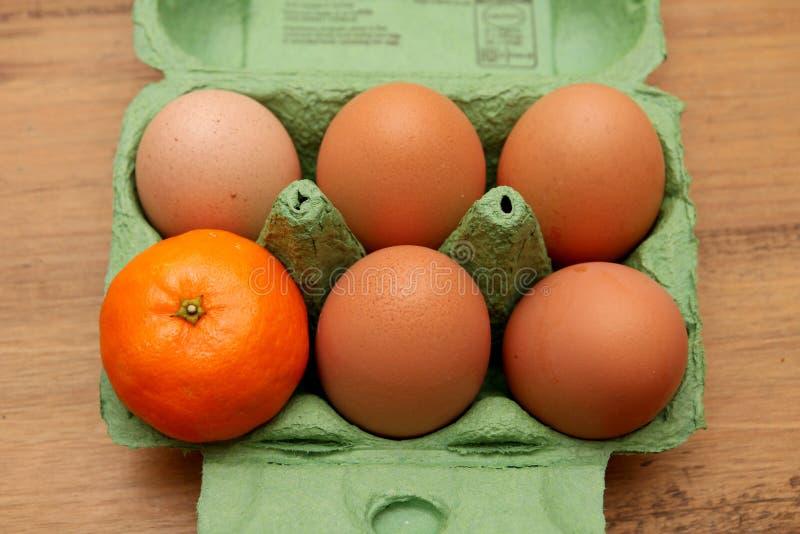 Satsuma oder kleine Orange, in einem Eierkarton, allein mit fünf Eiern lizenzfreie stockbilder