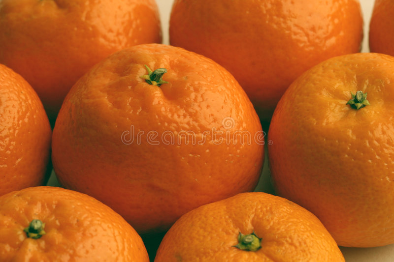 Download Satsumas stock image. Image of sour, colour, carpels, rutaceae - 49997