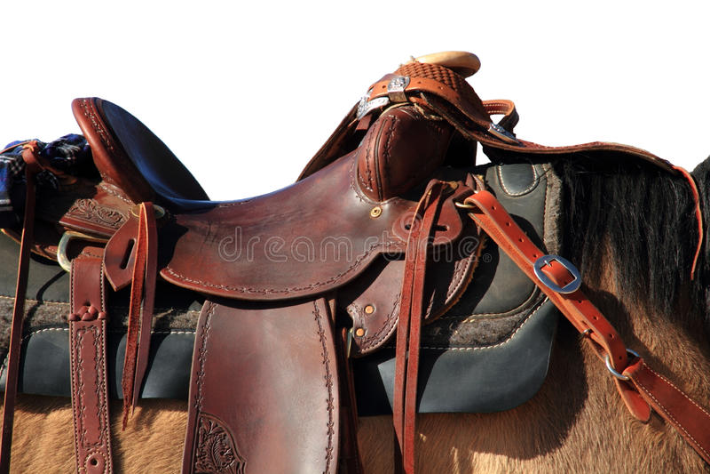 Sattel auf Pferd lizenzfreie stockfotos