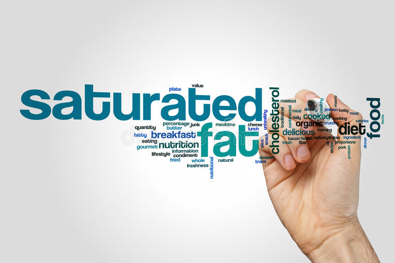 Saturated fat word cloud. Concept on grey background stock photography