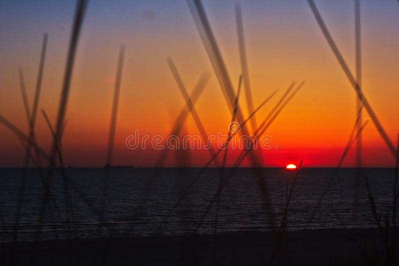Saturated sunset through beach grass. With ship on left of horizon stock photo