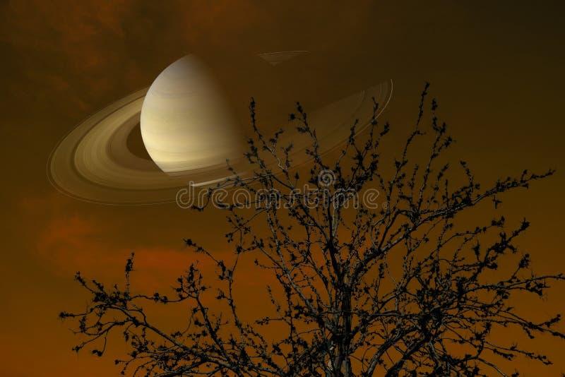 Saturn near jord på träd för filial för kontur för baksida för natthimmel torrt fotografering för bildbyråer