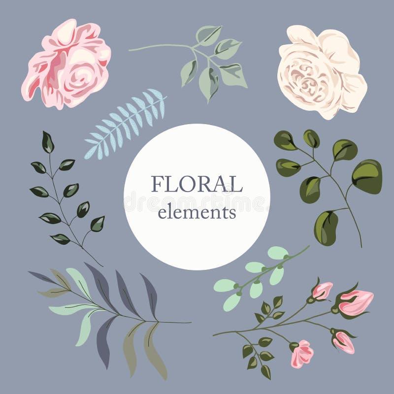 Satz Aquarellelemente in den Pastellfarben Blumen, Blätter und Niederlassungen für das Design von Karten und von Einladung vektor abbildung