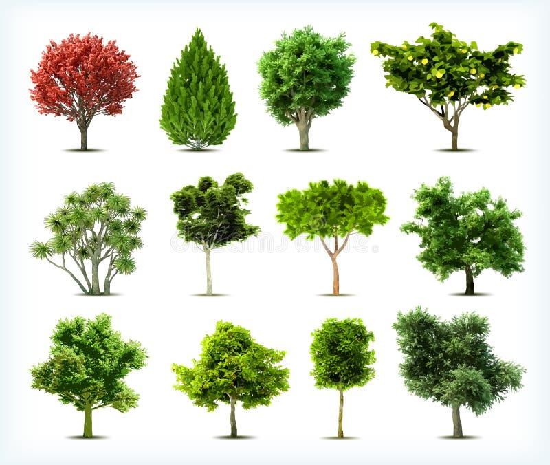 Satz Bäume lokalisiert. Vektor stockfotos