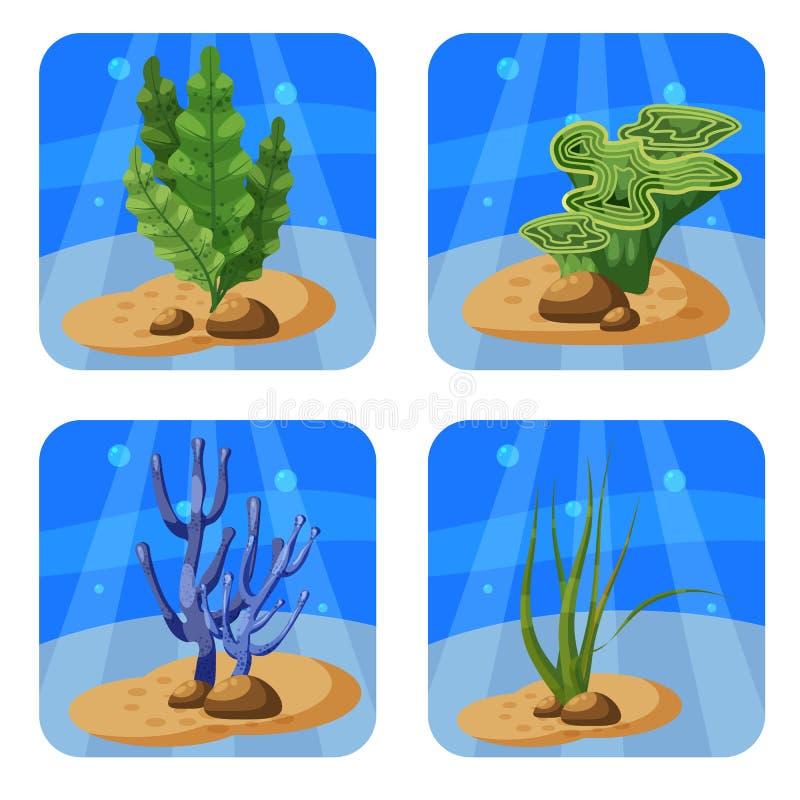 Satz bunte Korallen und Algen auf einem blauen Hintergrund Natürliche Unterwasservektorillustration Karikaturart, lokalisiert stock abbildung
