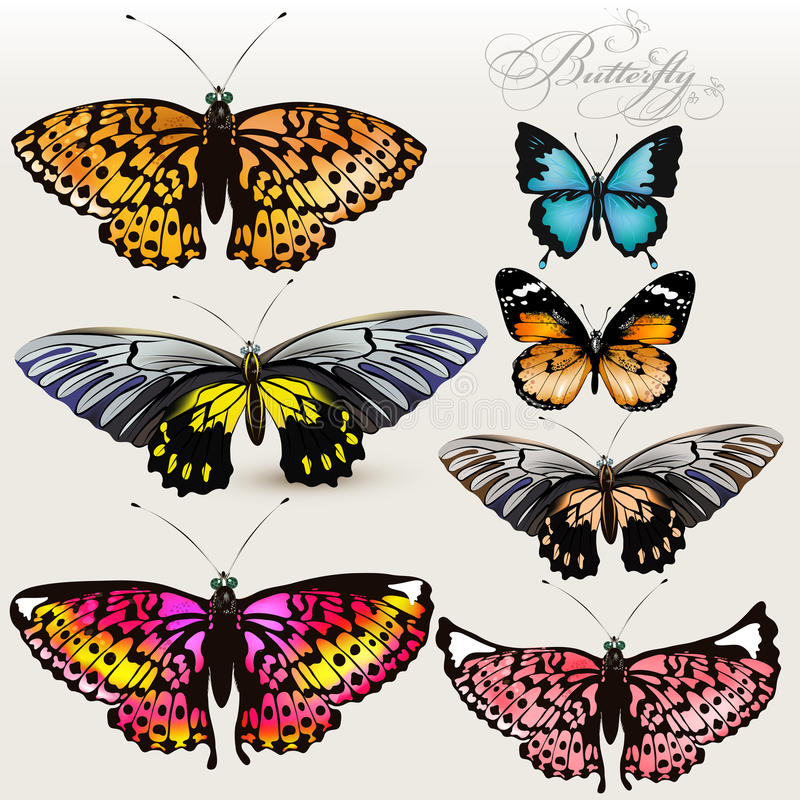 Satz bunte realistische Schmetterlinge des Vektors für Entwurf vektor abbildung
