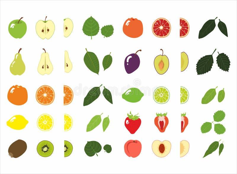 Satz der Frucht und des Blattes stockfotos