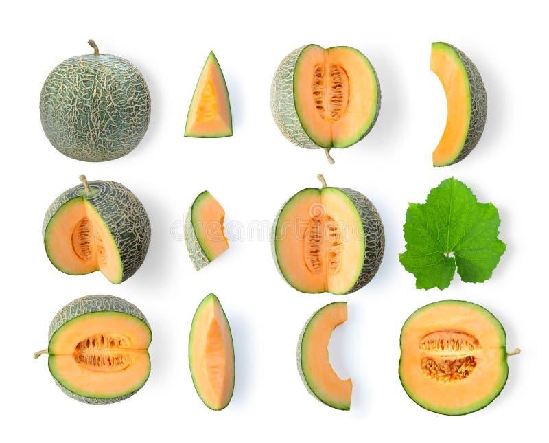 Satz der Kantalupenmelone lokalisiert auf weißem Hintergrund stockfotos