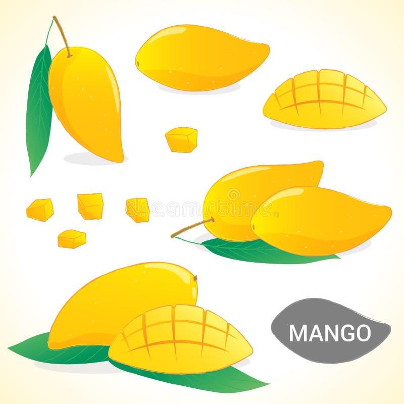 Satz der Mango im verschiedenen Artformat vektor abbildung