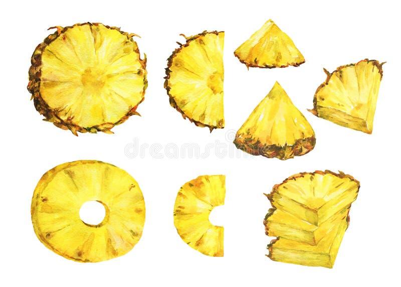 Satz der reifen Ananas der Scheibe lizenzfreie abbildung
