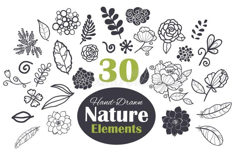 Satz der Vektor-schwarzer weißer natürlicher Element-30 stock abbildung