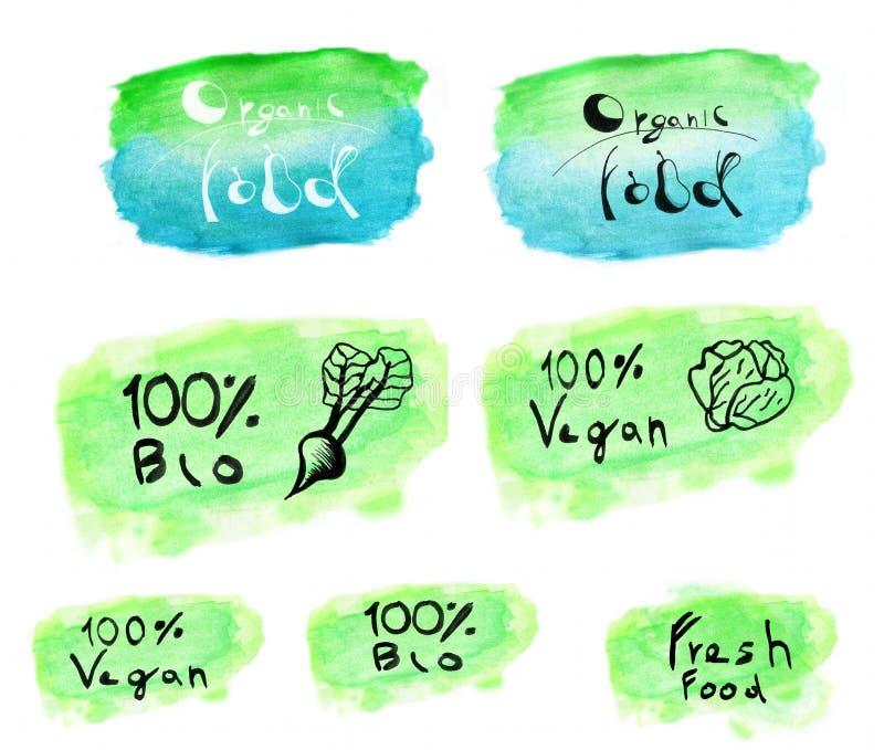 Satz des Aquarelllogos vegan stockbilder