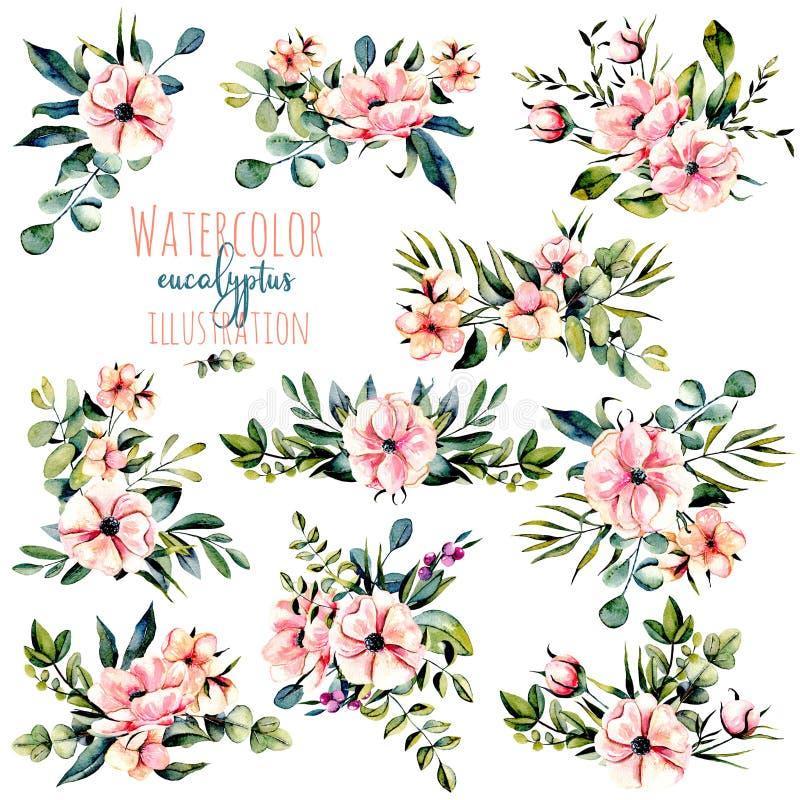 Satz des Aquarellrosas blüht, Eukalyptusniederlassungen und andere Betriebsblumenstraußillustration vektor abbildung
