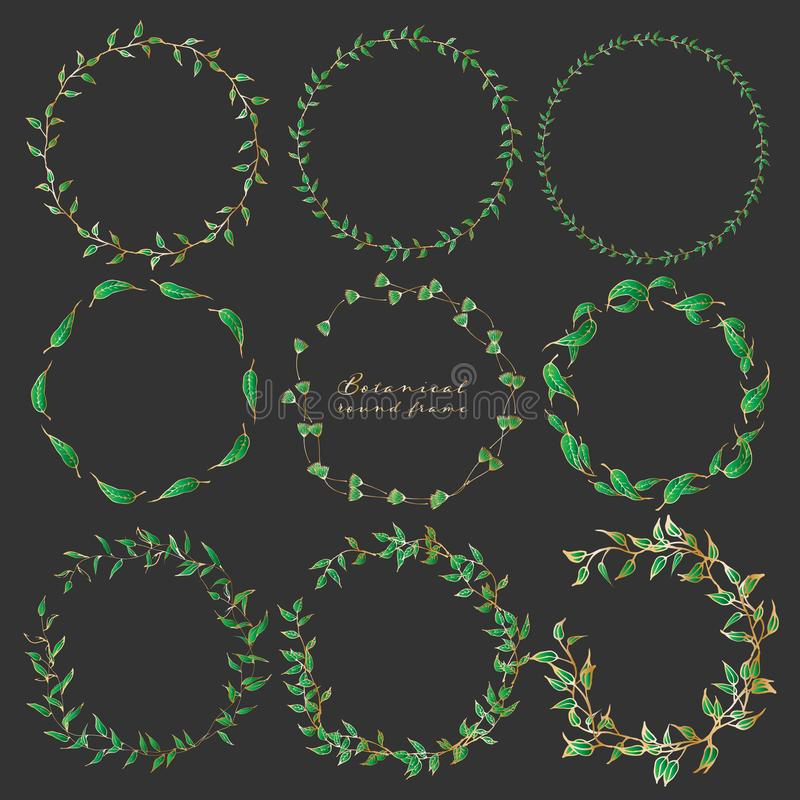 Satz des botanischen runden Rahmens, Handgezogene Blumen, botanische Zusammensetzung, dekoratives Element für Einladungskarte lizenzfreie abbildung