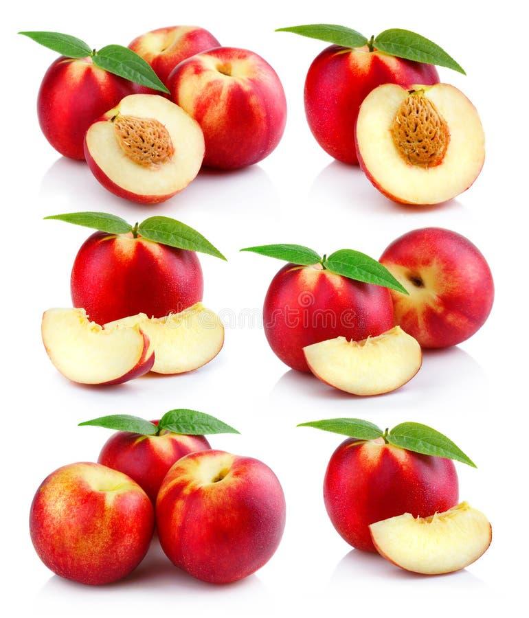 Satz des reifen Pfirsiches trägt mit den grünen lokalisierten Blättern Früchte lizenzfreie stockfotografie