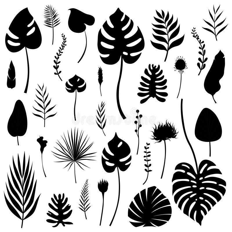 Satz des Schwarzen lokalisierte Schattenbilder von tropischen Blättern, von Gräsern und von Blumen von verschiedenen Arten Auch i stock abbildung