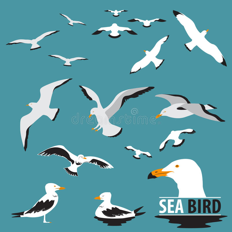 Satz des Seevogels und der Seemöwe stock abbildung