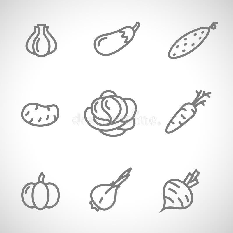 Satz flache Gemüseikonen, die mit schwarzen Linien auf weißem Hintergrund zeichnen lizenzfreie stockfotografie