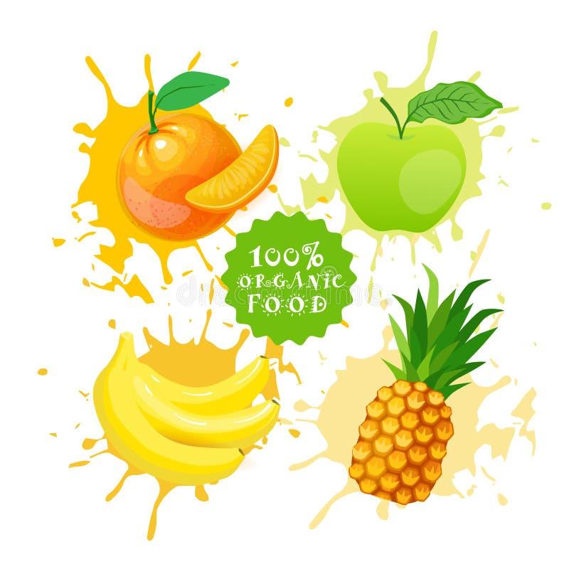 Satz Früchte über Farben-Spritzen-Hintergrund-neuem Juice Logo Natural Food Farm Products-Konzept stock abbildung