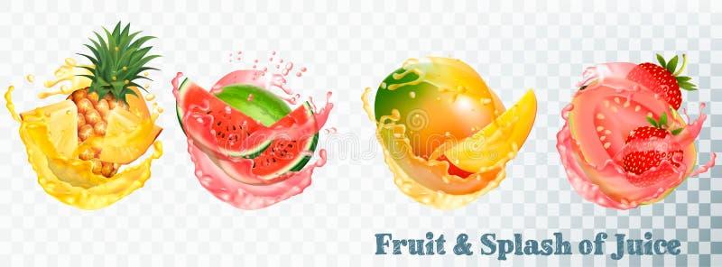 Satz Fruchtsaftspritzen stock abbildung