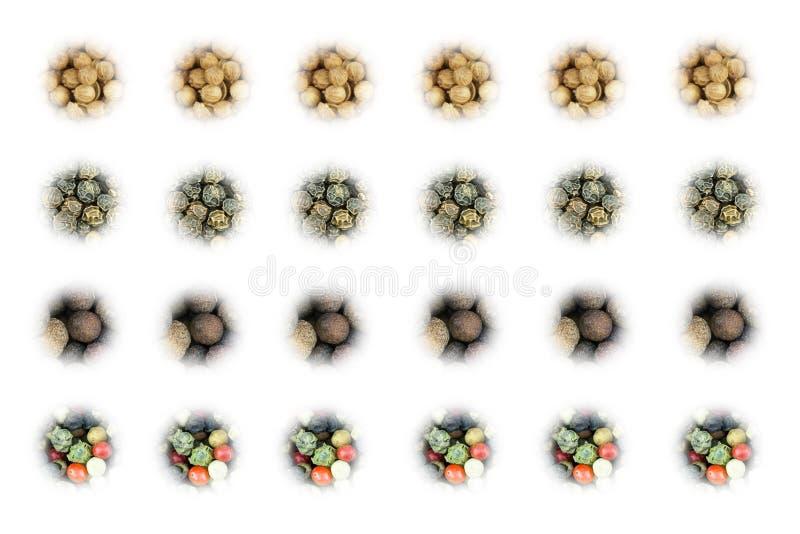 Satz Gewürzikonen von getrockneten würzigen Koriandersamen stellte von den Pimentpfeffern auf weißem Hintergrund ein lizenzfreie stockfotografie