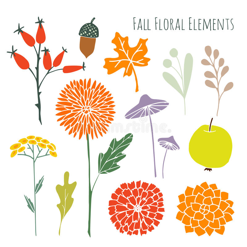 Satz Hand gezeichnete grafische mit Blumenelemente des Herbstfalles, lokalisiertes s vektor abbildung
