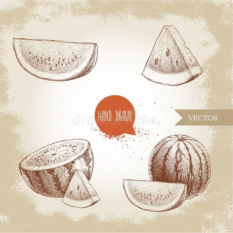 Satz Hand gezeichnete Skizzenartwassermelonen und Wassermelonenscheiben Weinlesedesignfrüchte stock abbildung