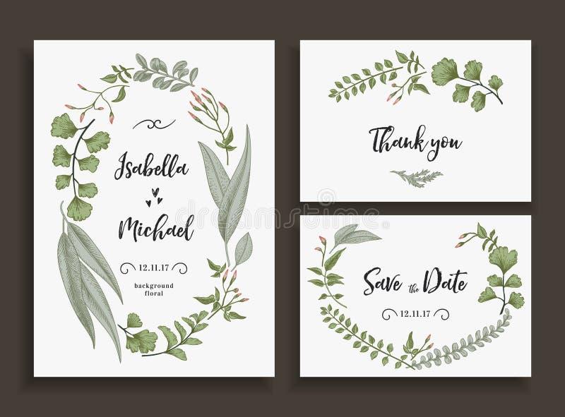 Satz Hochzeitskarten mit Blättern und Kräutern vektor abbildung